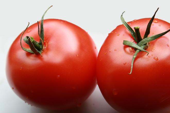 560208718-tomato-1322328.jpg